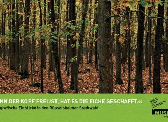 Stadtwald Rüsselsheim